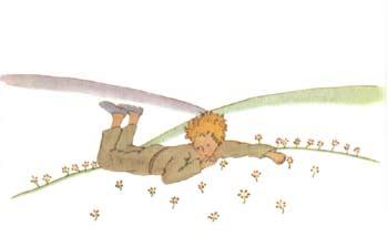 《小王子》童话小说图片